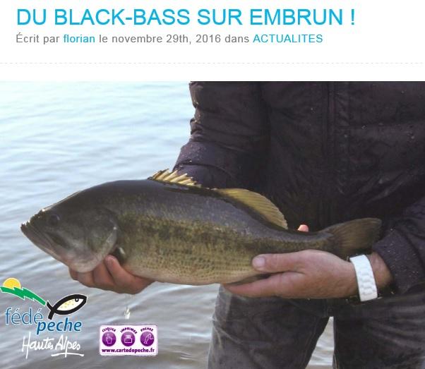Nouveaux empoissonnements en black bass 2016