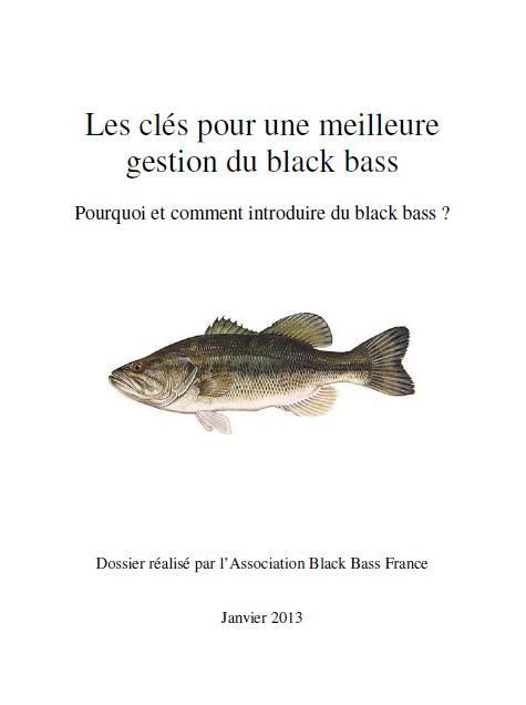 Dossier bass